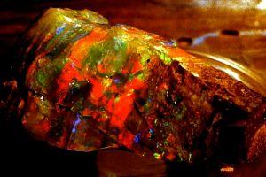 Boulder Opal Rough 3.jpg