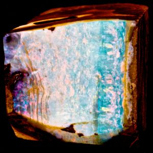 Boulder Opal Rough 9.jpeg