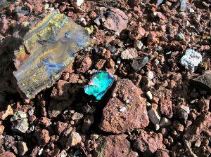 Wanna Boulder Opal Find.JPG
