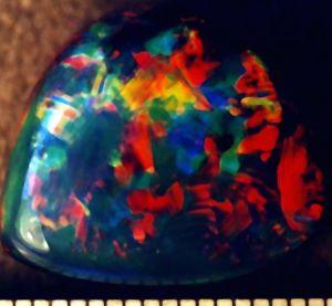 Goldfinger Mine Gem Boulder Opal 1.jpg