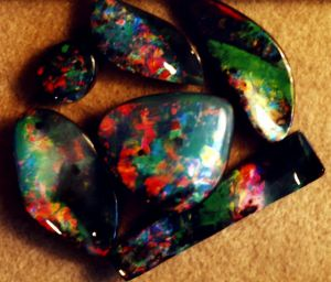 The Parrot Collection of gem Boulder Opals.JPG