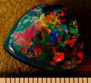 Boulder Opal Goldfinger gem.jpeg