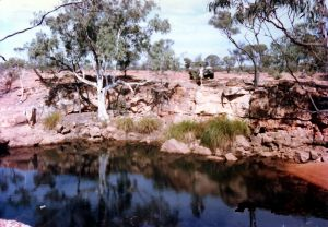 Top Springs waterhole Vergemont.JPG