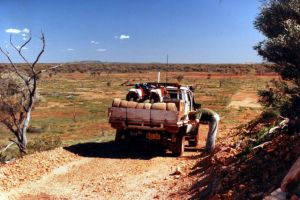 Opal Exploration in Queensland - positioning.jpg